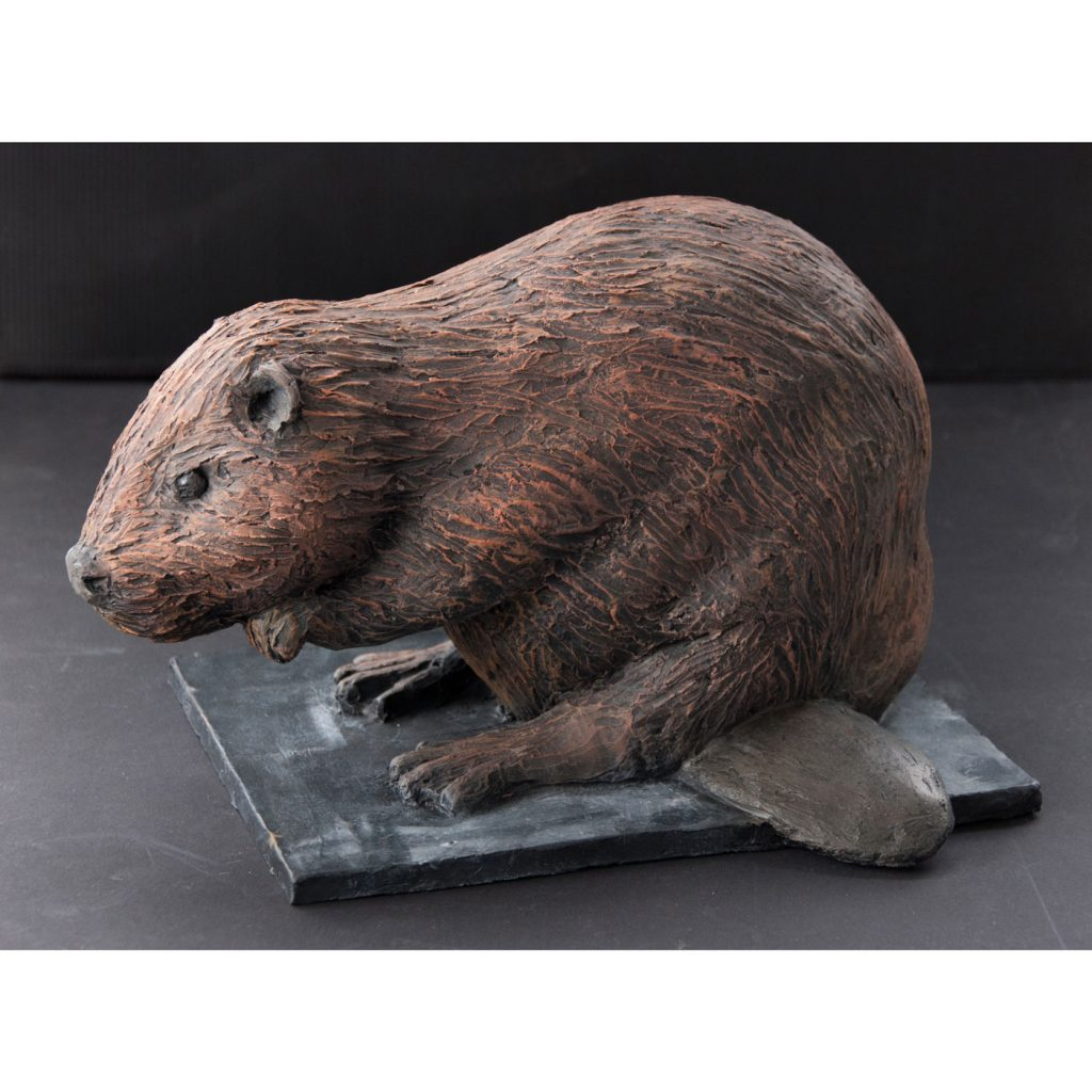 BEAVER,  © 2014, acrylic cast, molded in wax, 20 x 20 x 30 cm