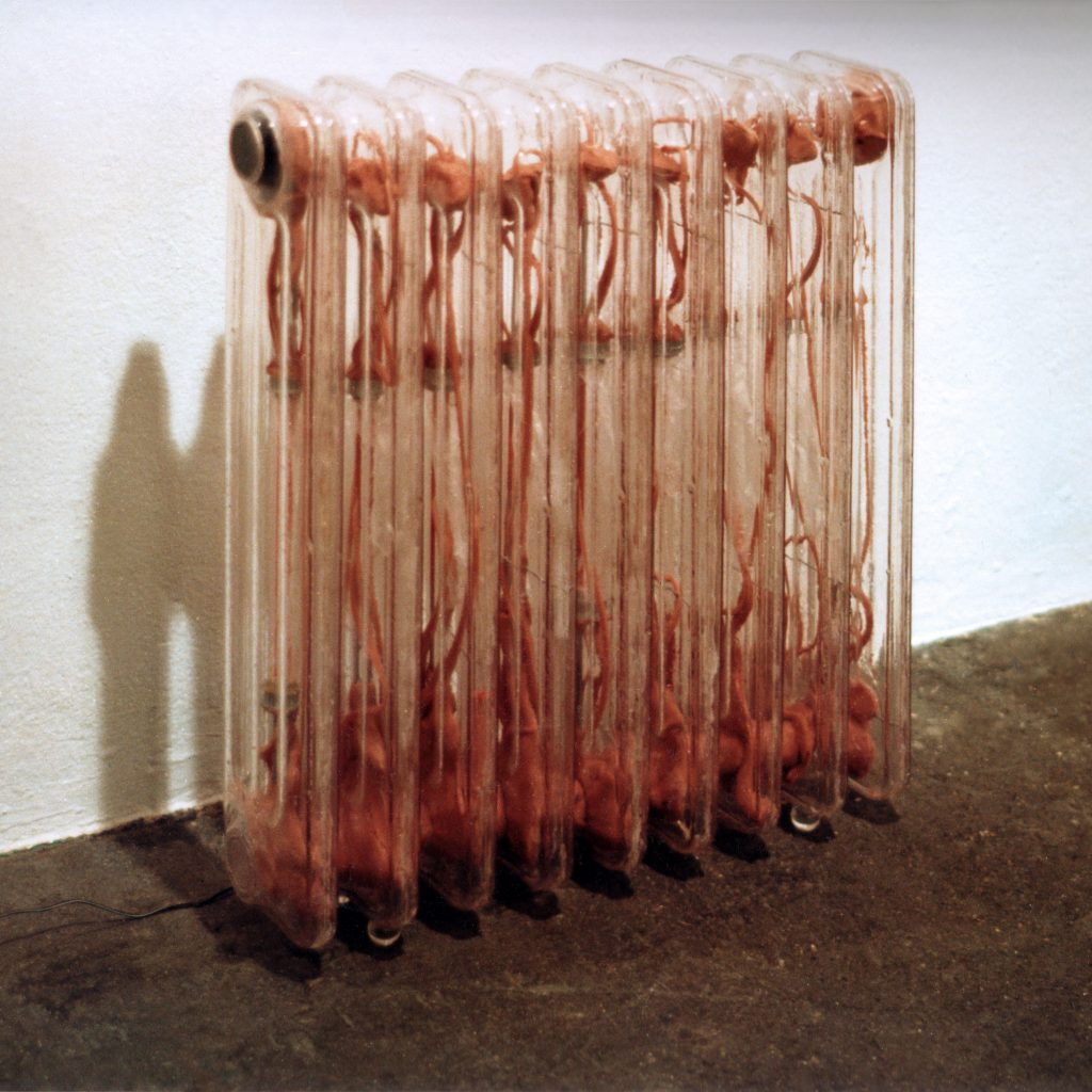 FREEZING RADIATOR, © 1997, acrylic perspex, aluminium, foam, speakers, 70 x 50 x 12 cm