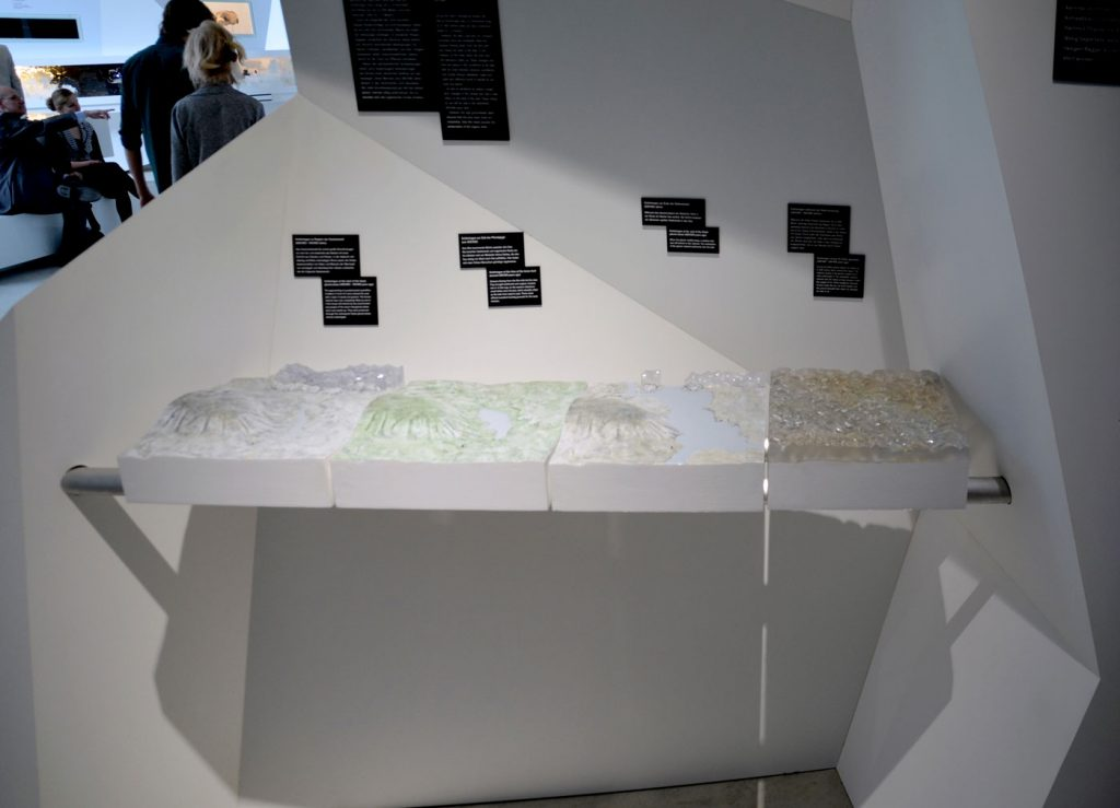 4 PALEON TOPOGRAPHIES,  © 2012, acrylic and polyester resin cast, acrylic paint, molded in clay, each approx. 40 x 30 x 10 cm